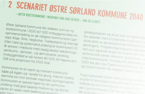 FREMTIDSVISJON: «ØStre Sørland Kommune» Trekkes Frem Som Et Mulig Navn På En Kommune Bestående Av Seks Kommuner I Østre Agder. Foto: Fra Forprosjektet