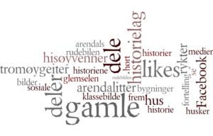HISTORIEFORTELLING: Lokalhistoriske Grupper På Facebook Er Artige, Mens Norsk Lokalhistorisk Institutt Skulle ønske Flere Brukte Andre Verktøy For Historieformidling I Tillegg. Illustrasjon: Wordle.net