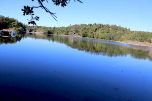 ALVEKILEN: Naturvernforbundet ønsker At Kilen Skal Bli Naturreservat. Foto: Esben Holm Eskelund