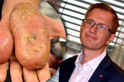 HET POTET: Ordfører Robert C. Nordli må svare på mulighetene for å få mer bakt potet til salgs i Arendal. Fotomontasje: Esben Holm Eskelund