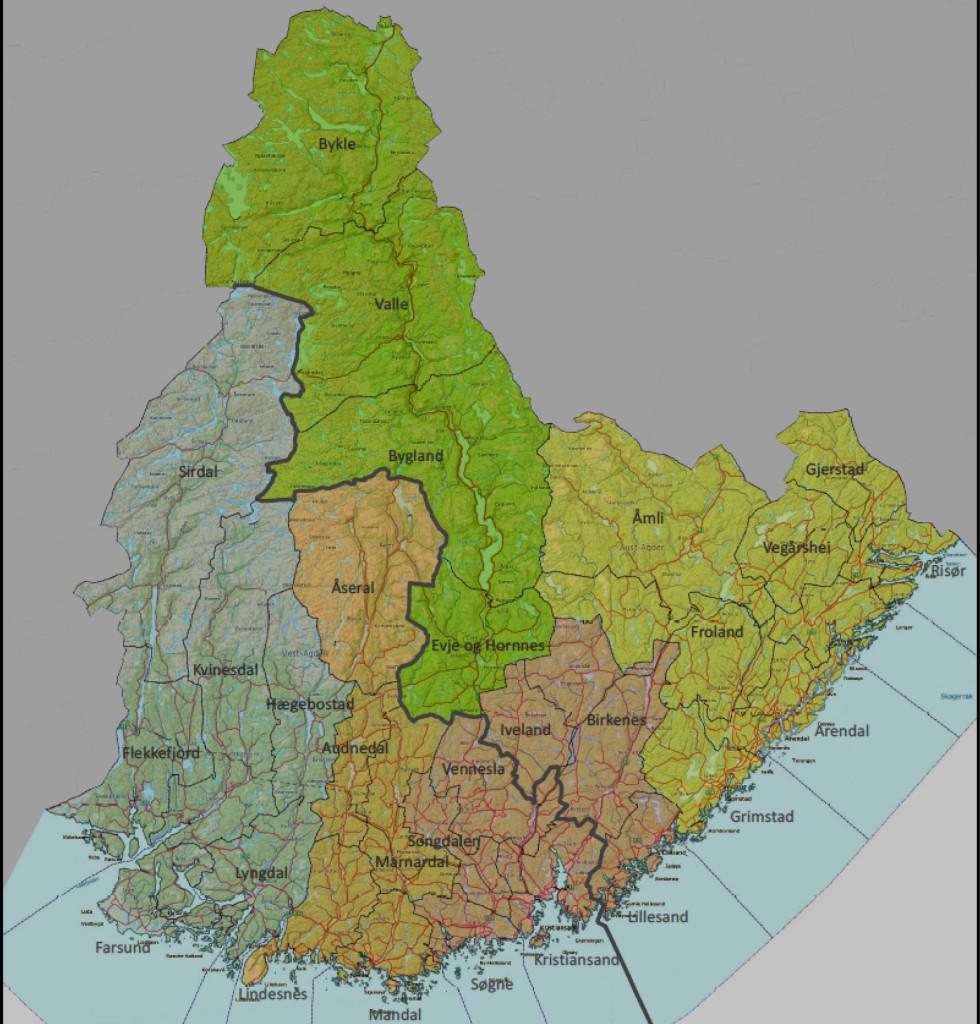 Vil Ha «Østre Agder Kommune»