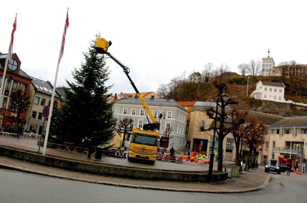 SNART JUL: Sånn Så Det Ut Da årets Julegran Kom På Plass. Foto: Esben Holm Eskelund