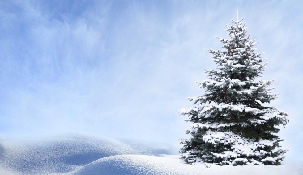 Snø, Snø Kom Igjen …