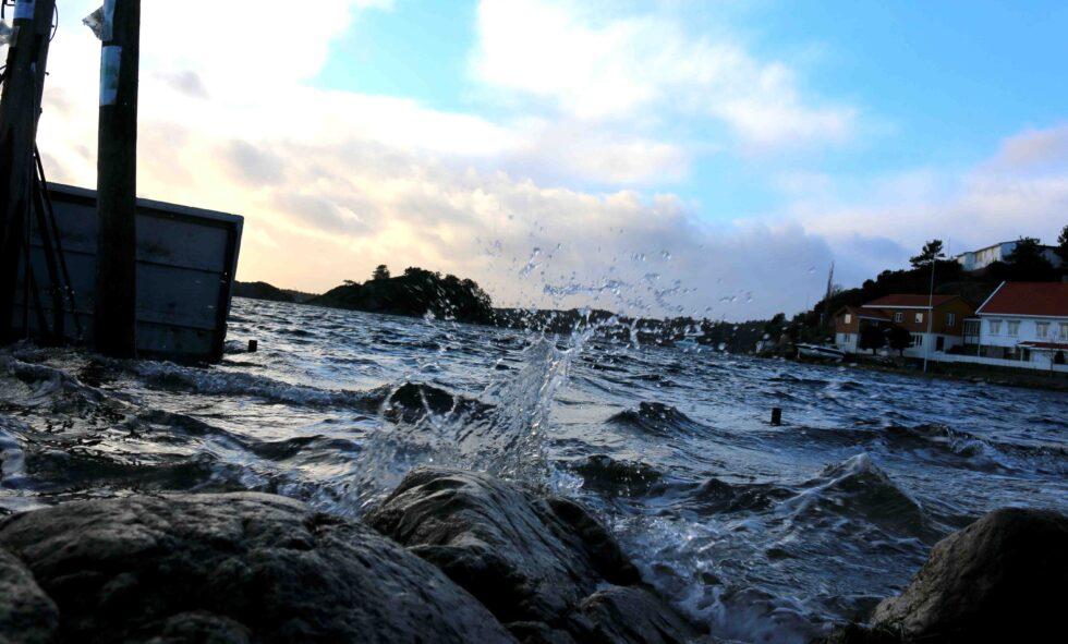 SPRINGFLO-SAFARI: Se Ekstreme «Vidars» Flørt Med Arendal