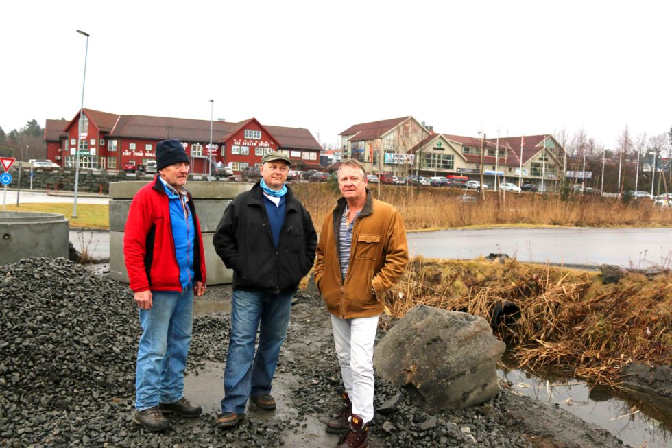 Grunneiere Protesterer Mot Sørsvann-planer