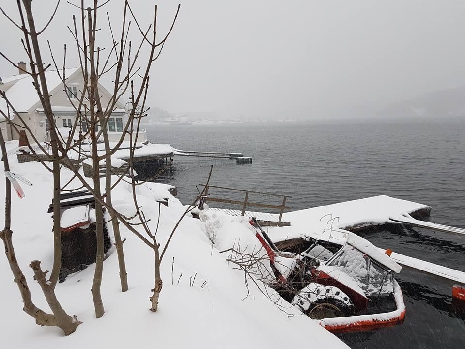 Brøytet Snø, Kjørte I Sjøen