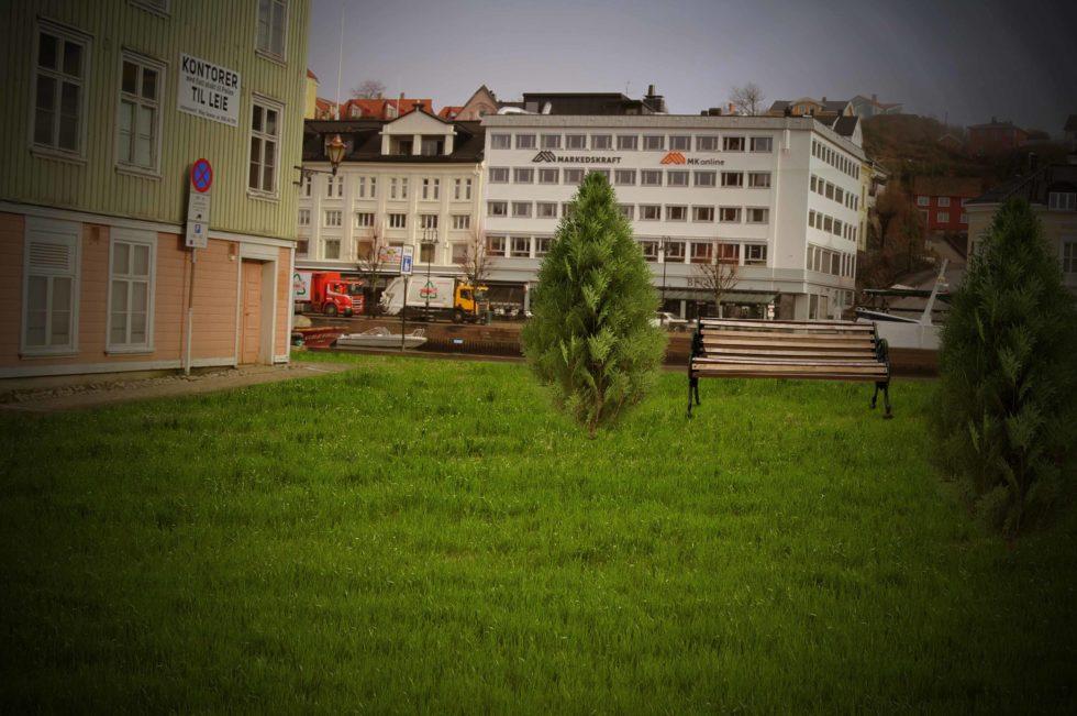 Den Grønne Drømmen