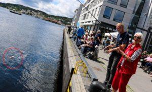 FISKEGLEDE: Lykken Var Stor Da Laila Nilsen For Fjerde Gang Halte En Fisk Opp Av Fjorden. Foto: Esben Holm Eskelund
