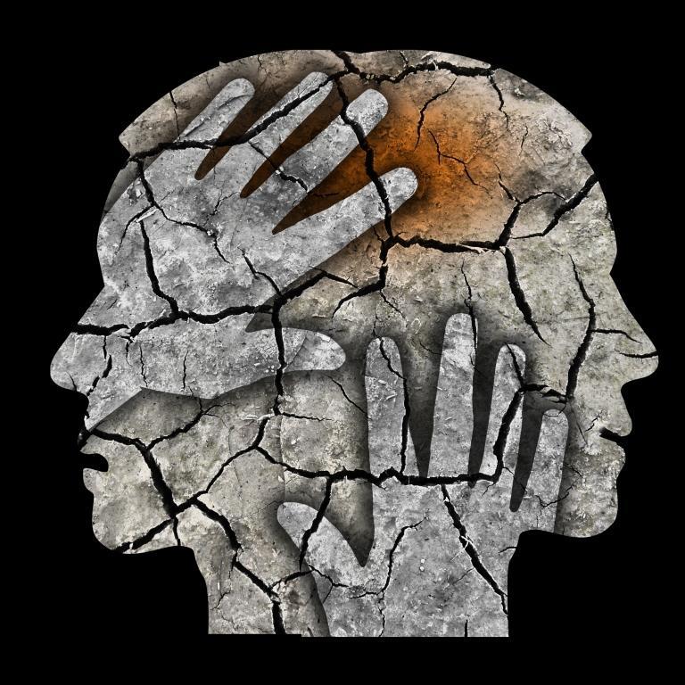 Fra Schizofren Til Psykolog
