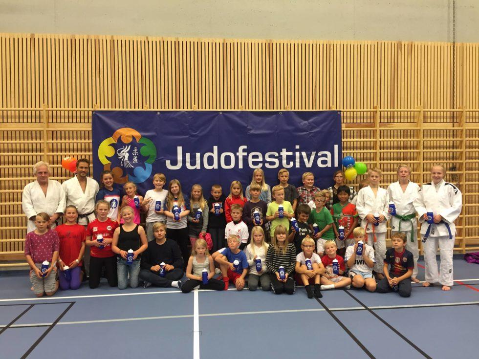 Nyvalgt President I Judoforbundet Med Mange Jern I Ilden