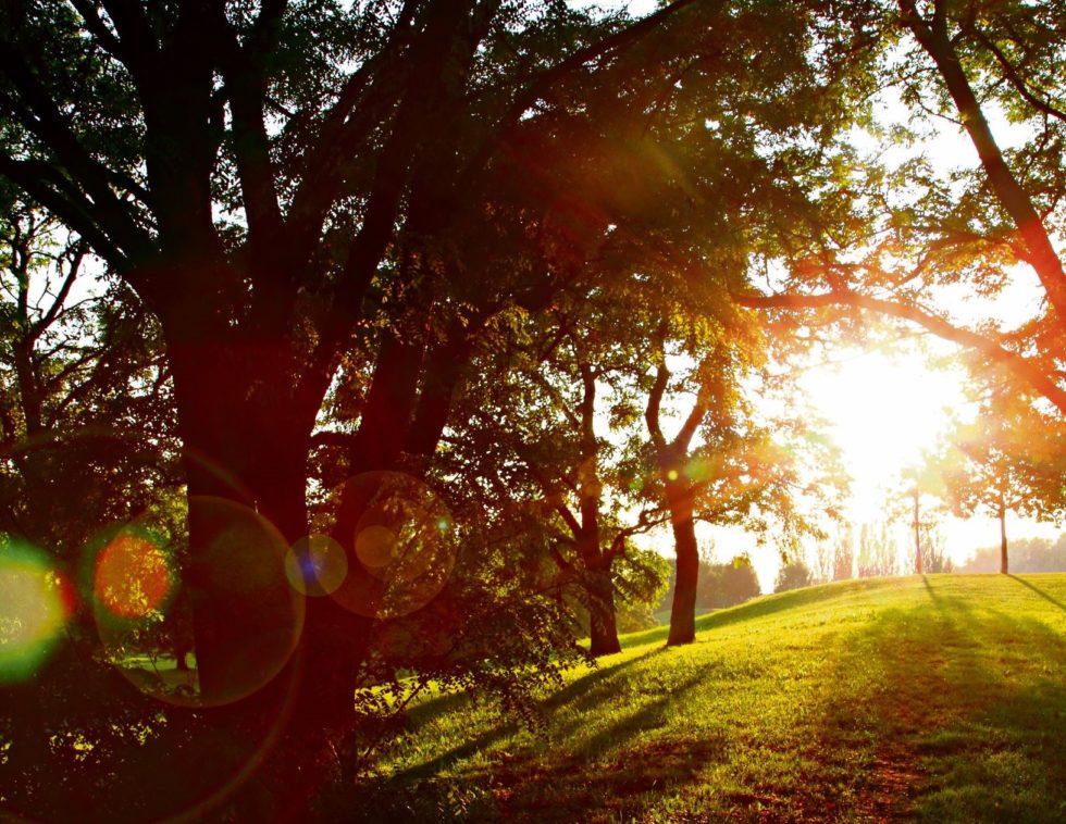 Heljeprat: Der Kom Lyset På