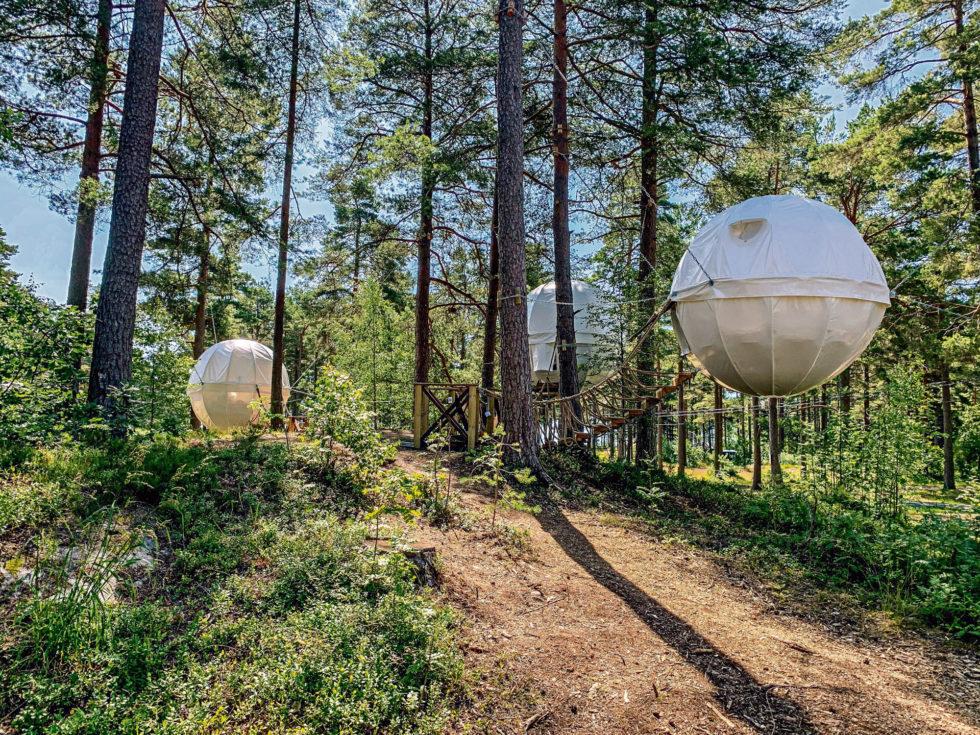 Turist I Egen By: En Dag På Hove