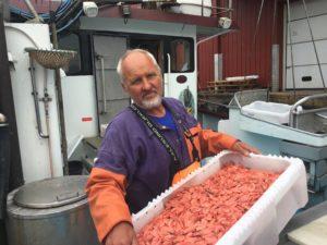 LABRE FANGSTER: Fisker Atle Nilsen Sier Folk Må Belage Seg På Høyre Rekepriser I Sommer. Fangstene Er Labre, Forteller Han.