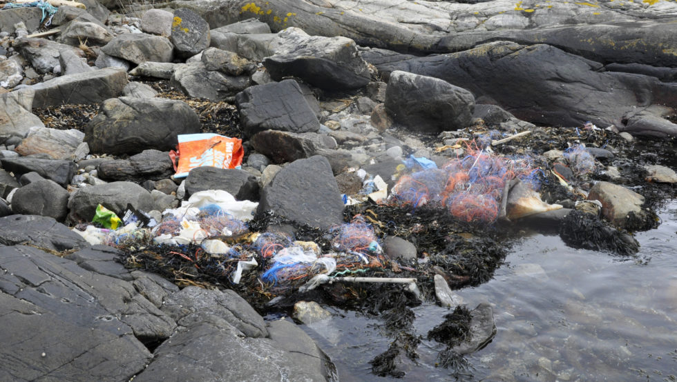 SØPPEL: Store Mengder Søppel Har Drevet I Land I Buktene Utenfor Flosta / Foto: Heidi Therese Vigerstøl