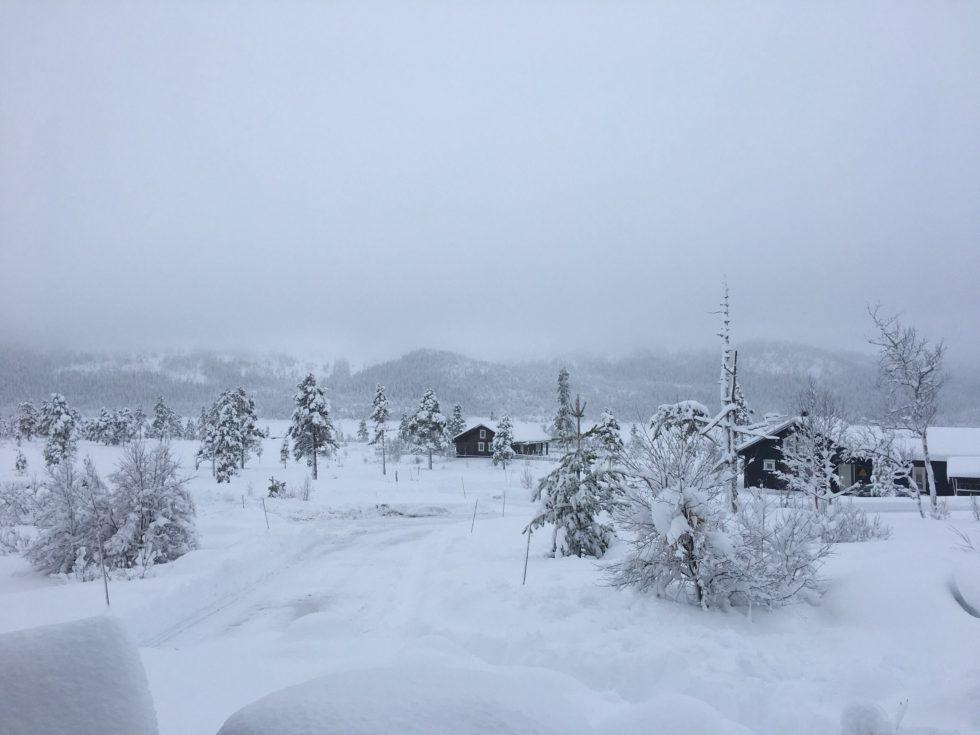 BIRTEDALEN: I Birtedalen Ligger Snøen Dyp Og Skaper Et Flott Skiføre I Nydelig Vinterlandskap.
