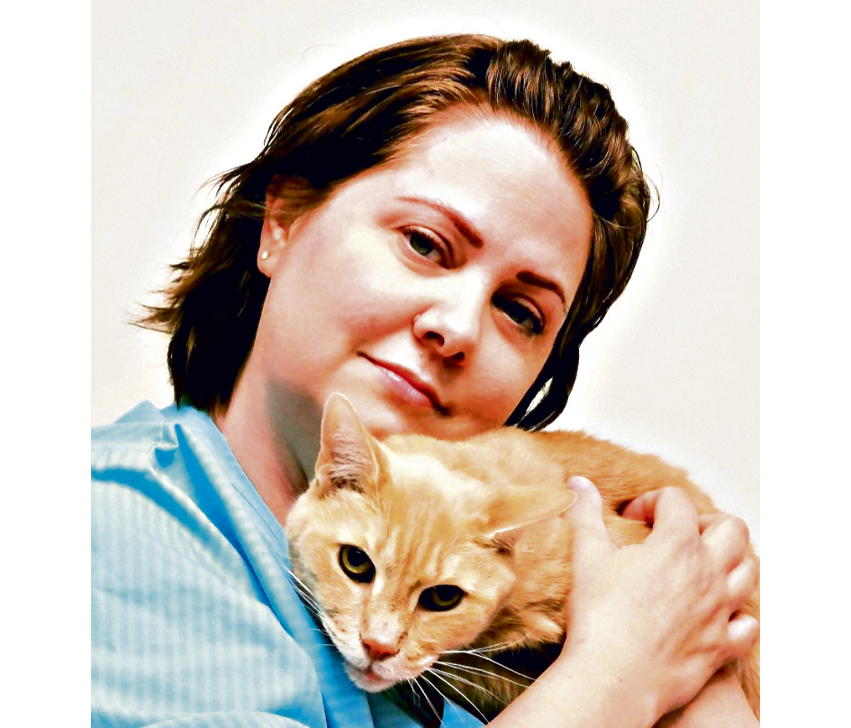 Gull I «kattevennlighet»